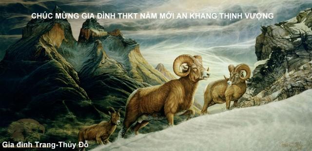 thieptet-2015-dotrang
