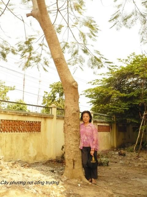 150320-thkt-kiemhuong-kientuong-tnbach-07_resize